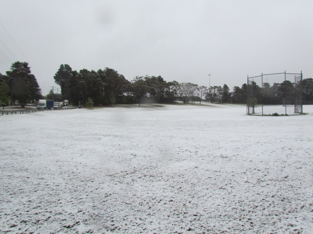 Pitt Park in snow 12 Oct 2012 - 3